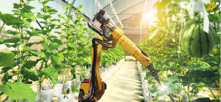 artificial intelligence pollinate fruits vegetables robot